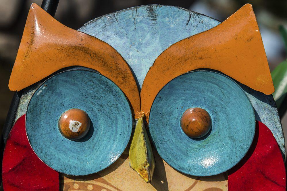 Platz 13 - Volkhardt Lembcke - Deine blauen Augen