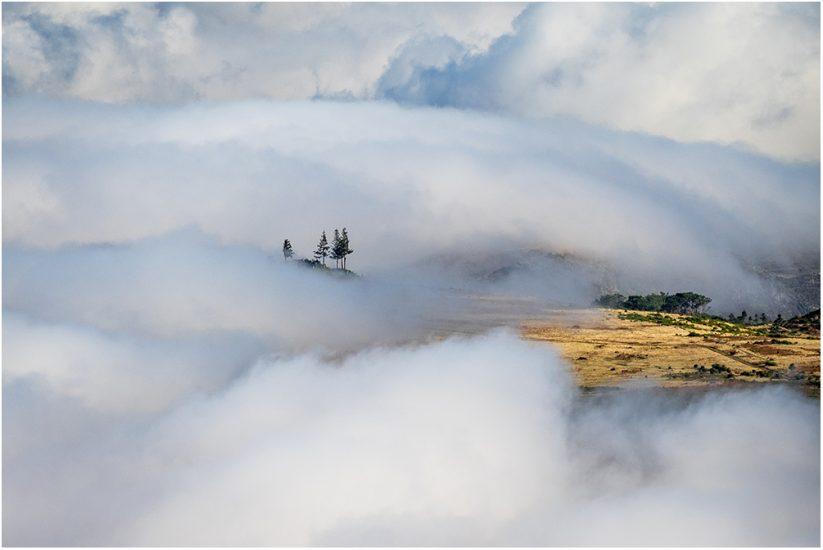 Platz 1 - Wiebke Kunas - Über den Wolken