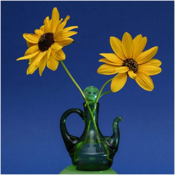 Platz 12 - Adolf Wiehenkel - Blumen mit Frosch -
