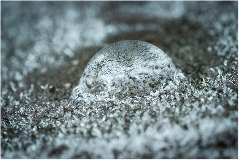 Platz 15 - Wiebke Kunas - Frost